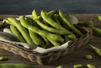 Raw Organic Fresh Green Fava Beans